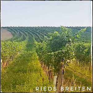 Riede Breiten